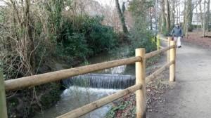 Sortir son chien au Parc du Centre Culturel (sentier) à Cesson Sévigné