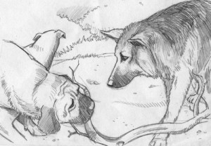Fabien Bachet, illustrateur dessinateur