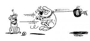 la laisse à enrouleur chien gag de Fabien Bachet pour Au Poil Dans Mes Pattes, éducateur canin comportementaliste sur Rennes