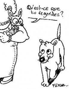 chihuahua gag par Fabien Bachet bdfabb. Au Poil Dans Mes Pattes! éducateur canin comportementaliste Rennes