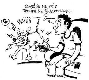 attention au collier électrique gag de Fabien Bachet FABB , Au Poil Dans Mes Pattes, éducateur canin Comportementaliste Rennes