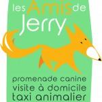 les amis de jerry, promenade canine, taxi animalier rennes, au poil dans mes pattes