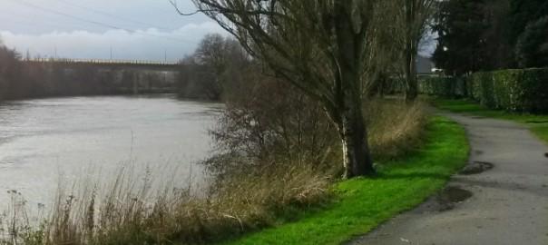 Promenade le long de la Vilaine, Au Poil Dans Mes Pattes!
